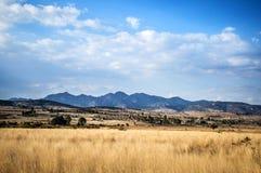 Mexican Landscape Stock Photo