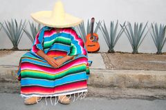 Mexican lazy man sit serape agave. Guitar nap siesta typical topic Royalty Free Stock Photography