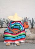 Mexican lazy man sit serape agave guitar. Nap siesta typical topic Stock Photos