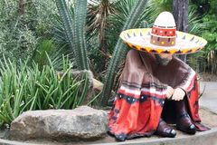 Mexican Man in Cactus Park Royalty Free Stock Images