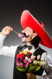 Mexican man wears sombrero  on white Royalty Free Stock Photos