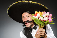 Mexican man wears sombrero  on white Royalty Free Stock Photos