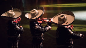 Mexican mariachis playing. Stock Photos