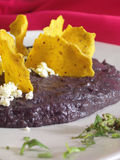 Mexican mole with nachos Stock Images