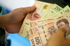 Mexican money. Detail of woman Hands counting Mexican money stock images