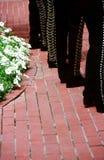 Mexican Musicians stock photo