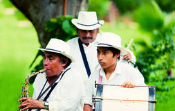 Mexican musicians playing traditionalinstruments Royalty Free Stock Photos