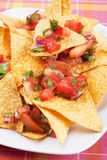 Mexican nachos corn chips with salsa Royalty Free Stock Photography