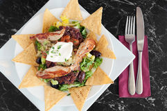Mexican nachos with grilled chicken fillets Royalty Free Stock Photography