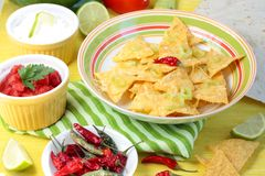 Mexican nachos and tortillas Royalty Free Stock Photo