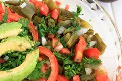 Mexican Nopal Cactus salad Royalty Free Stock Photos
