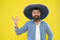 Mexican party concept. Celebrate traditional mexican holiday. Lets have fun. Mexican guy happy festive outfit ready to. Celebrate. Man bearded cheerful guy wear stock photos