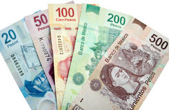 Mexican Pesos isolated royalty free stock images