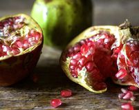 Mexican pomegranate Stock Images