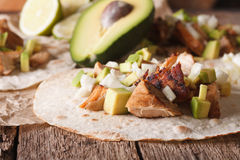 Mexican Pork carnitas with onions and avocado close-up. horizont Royalty Free Stock Images