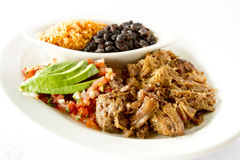 Mexican Pork Dish royalty free stock photo