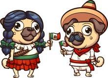 Mexican_pugs 库存图片