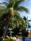 Mexican Resort Royalty Free Stock Images