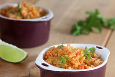 Mexican rice Royalty Free Stock Photos