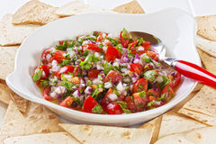 Mexican Salad Royalty Free Stock Photography