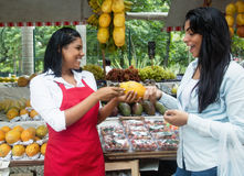 Mexican saleswoman speaking with client on a farmers market. Mexican saleswoman speaking with client outdoor on a farmers market royalty free stock photography