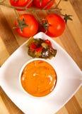 Mexican sauce Stock Photos