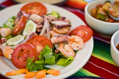 Mexican seafood salad. With shrimp and calamari Royalty Free Stock Photos