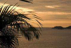 Mexican Serenity. This is an image of a palm frond at sunset with the islands in the background in Ixtapa, Mexico Stock Photos