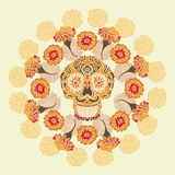 Mexican skull with merigold pattern. Mexican skull - calavera, surounded by a circle of merigold flowersn Royalty Free Stock Images