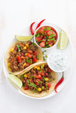 Mexican snack - tortilla with chili con carne, tomato salsa Royalty Free Stock Photos