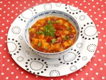 Mexican stew Royalty Free Stock Photography