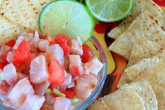 Mexican style Ceviche. With corn chips Royalty Free Stock Photos