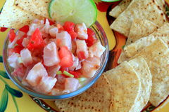 Mexican style Ceviche Stock Images