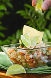 Mexican Style Ceviche Stock Image
