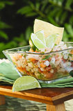 Mexican Style Ceviche Stock Photography