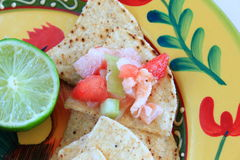 Mexican style Ceviche on a tortilla chip. With a lime on the side Royalty Free Stock Images