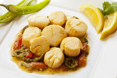 Mexican style scallops with jalapeno peppers Stock Images