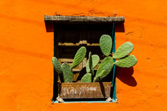 Mexican style window Stock Photo