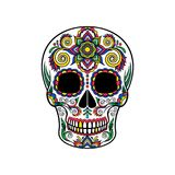 Mexican sugar skull with floral ornament, Day of the death vector Illustration Royalty Free Stock Image