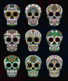 Mexican sugar skulls with floral pattern set, Day of The Dead vector Illustration. On a dark background royalty free illustration