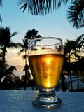 Mexican Sunrise with Cerveza Royalty Free Stock Images