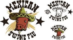 Mexican swine flu Stock Photography