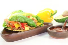 Mexican tacos with beef Royalty Free Stock Image