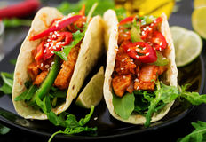 Mexican tacos with chicken fillet in tomato sauce and salsa Royalty Free Stock Photo