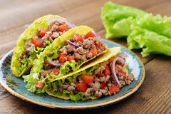 Mexican tacos Stock Photography