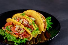 Mexican tacos with vegetables vegetarian wrap sandwich. With vegetables, green salad, tomato chili pepper oven tray dish stock photography