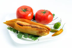 Mexican tamal and tomatoes isolated on white Stock Image