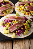 Mexican tortilla with tuna, red cabbage, corn, avocado and onion royalty free stock images