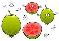 Mexican tropical cartoon guava fruits characters Royalty Free Stock Image