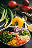 Mexican vegetable salad with black bean- cowboy caviar. Stock Image